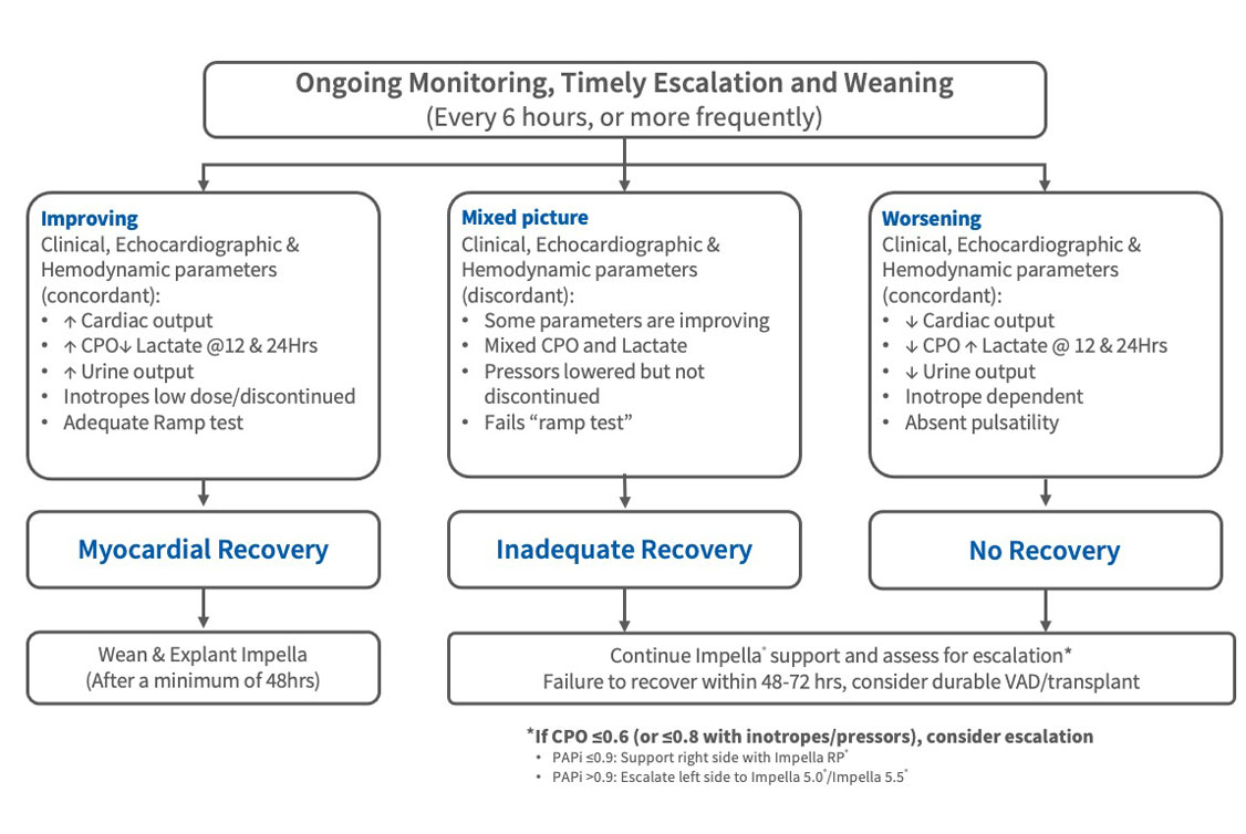 Chart showing the different paths one could take after myocardial recovery