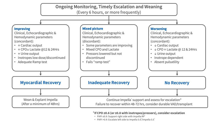 Chart showing the escalation, weaning and transfer protocols during AMI cardiogenic shock