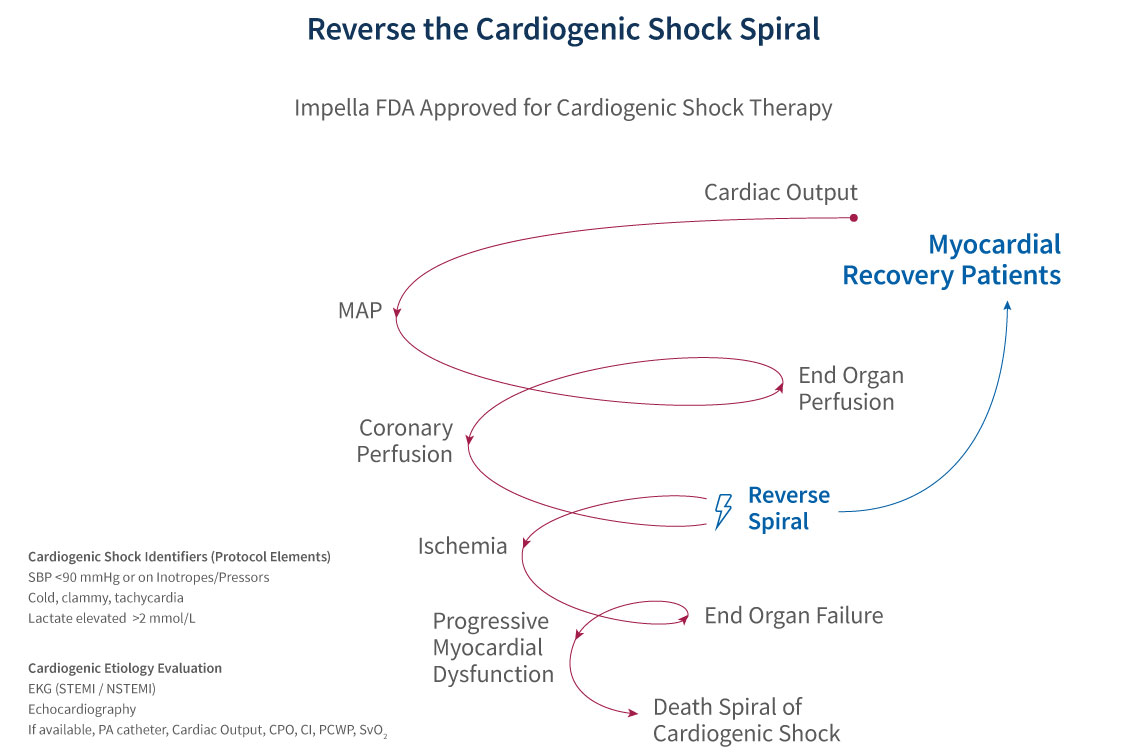 Graph displaying the cardiogenic shock spiral and how to reverse it