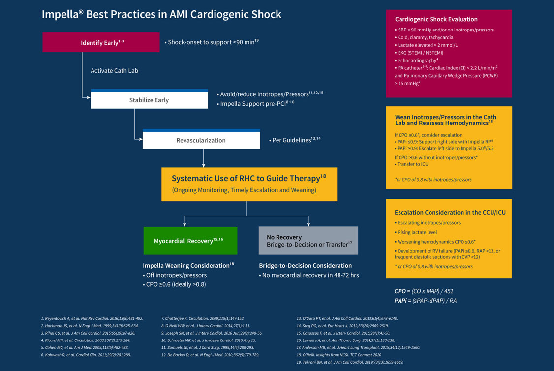 Graphic of best practices for cardiogenic shock including identifying the patient, stabilizing early, revascularization and assessing for myocardial recovery